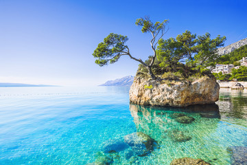 Beautiful bay near Brela town, Makarska rivera, Dalmatia, Croatia Wall mural