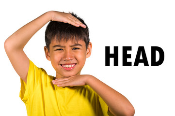 English language learning card with 8 years old child marking his head with his hands isolated on white background as part of school cards set of body and face parts