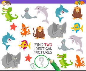 find two identical animals task for children