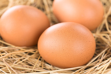 Fresh raw brown eggs on hay (Selective Focus, Focus on the front of the first egg)