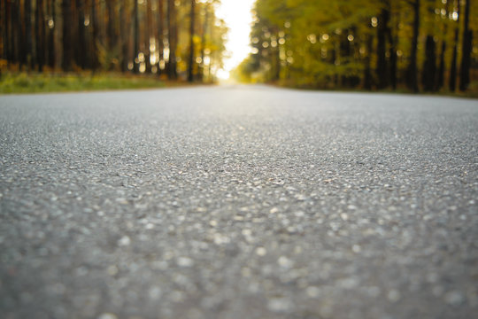 road from the ground level - shallow depth of field and trees bokeh.