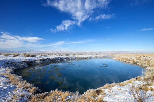 Horseshoe Springs Wildlife Management Area, Tooele county, Utah