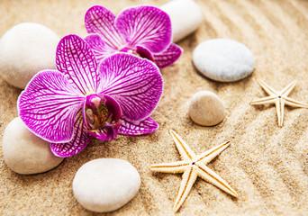 Foto op Plexiglas Stenen in het Zand Orchids and stones