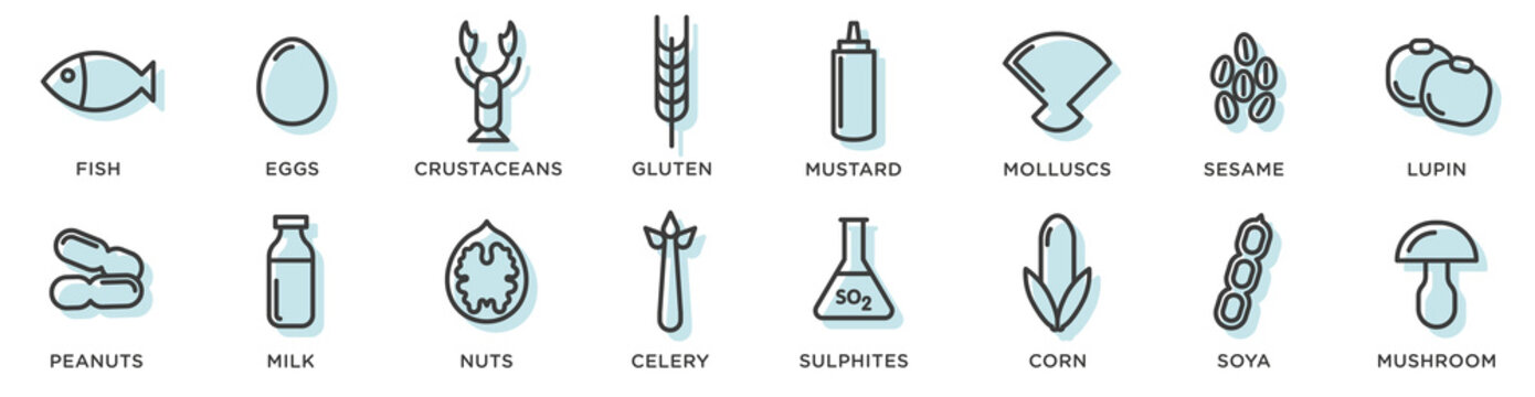 Food allergy icons. Basic allergens and diet line icons vector set. Isolated on white background .