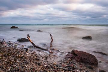 Treibholz an der Küste der Ostsee bei Warnemünde