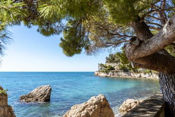 Beautiful sunny rocky beach in Miramare's park, Trieste Italy