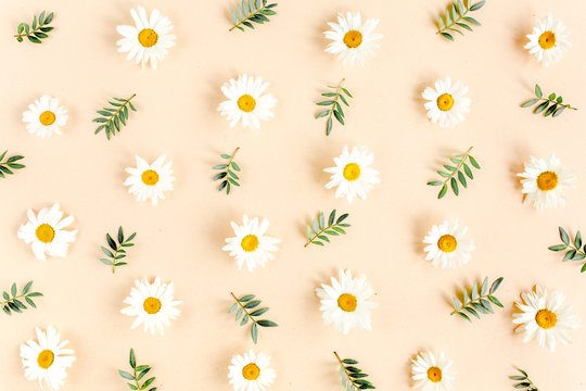 Pattern made of chamomiles, petals, leaves on beige background. Flat lay, top view floral background.
