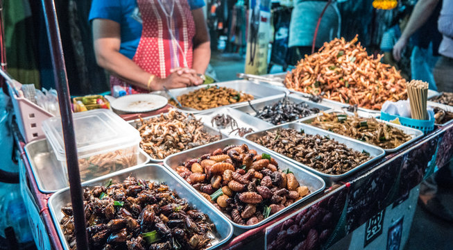 Fried insects on the streets of Bangkok, Thailand