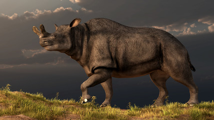 Brontotherium was a prehistoric mammal that lived in North America about 35 million years ago. It's also know a megacerops. 3D rendering
