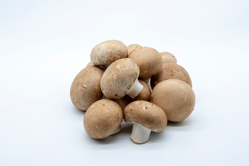 brown mushrooms, isolated on white background