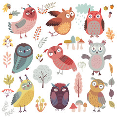 Fototapete - Cute Woodland owls. Funny characters with different mood. Vector illustration.