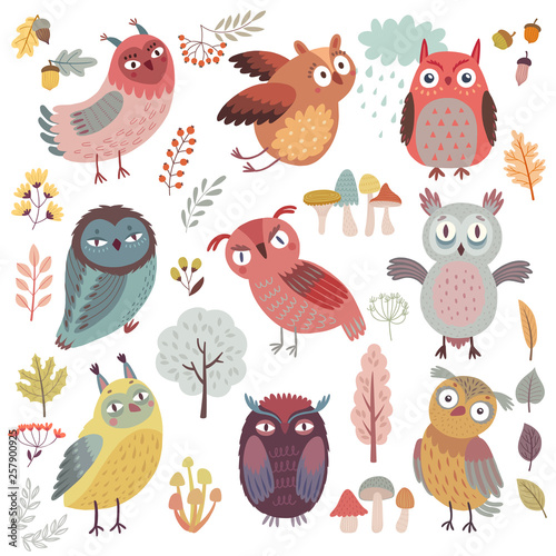 Wall mural Cute Woodland owls. Funny characters with different mood. Vector illustration.