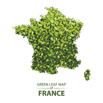 Green leaf map of france vector illustration of a forest is concept