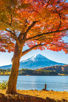 Scenic view of Fuji Five Lakes with Mount Fuji in background