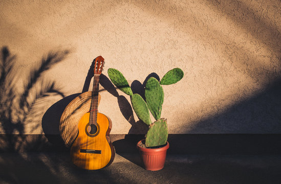 Cactus and guitar and sombrero as Mexican symbols with palm tree making shadow on the wall. Cinco de Mayo concept