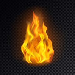 Fire isolated on transparent background.