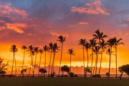 USA, Hawaii, Kauai, Pacific Ocean, Kapa'a Beach Park, palms at sunrise