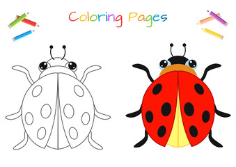 Funny little ladybug beetle. Copy the picture. Coloring book. Educational game for children. Cartoon vector illustration