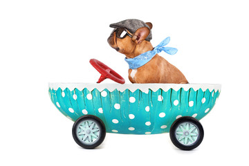 Frohes Osterfest - Osterei mit Hund