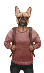 Animals dressed up in human clothing. Portrait of a Dog Boy. Hand-drawn illustration of French Bulldog, digitally colored.