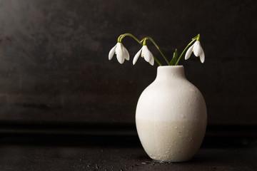 Snowdrops in vase