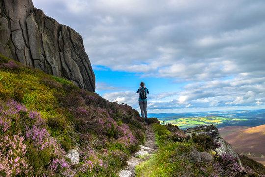 Tourist walking in Cairngorms National Park. Route to Clachnaben, Glen Dye, Aberdeenshire, Scotland, UK