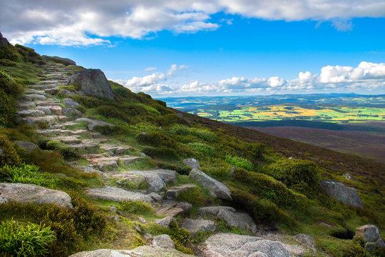 Route to Clachnaben hill. Cairngorms National Park, Aberdeenshire, Scotland, UK