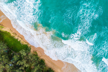 Aerial view of seabeach with wave and green tree