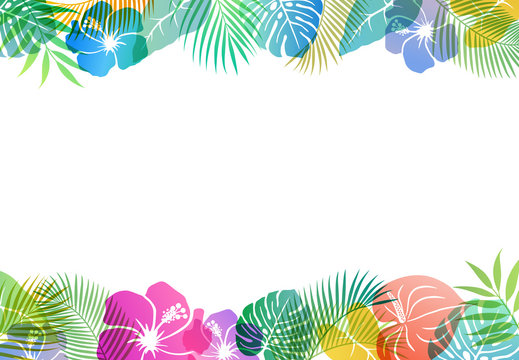 Summer tropical image Background material