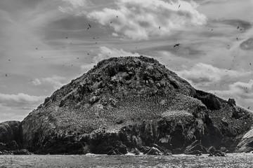 Felsen Bretagne Granitküste