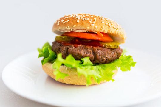 Homemade hamburger on the plate