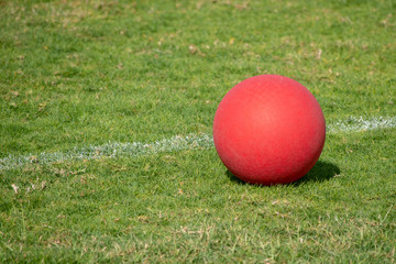 Red Playground ball on the green grass.