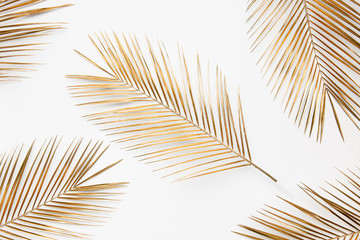 Golden palm branches on white background