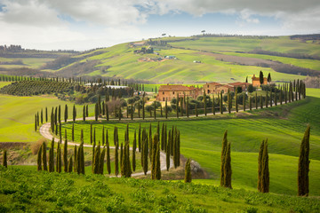 Photo sur Aluminium Toscane Tuscan hill with row of cypress trees and farmhouses. Tuscan landscape. Italy