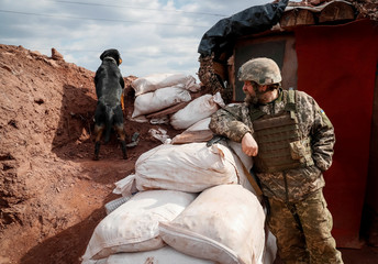 Ukrainian serviceman is seen at a position as a dog looks out from a trench on the front line near the city of Bakhmut