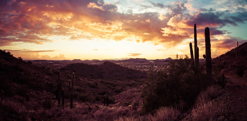A panorama featuring a sunset in the desert outside of Phoenix, AZ.  This image looks to the west with saguaro cactus and mountainous desert terrain.