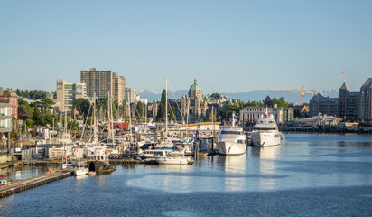 victoria british columbia canada scenery in june
