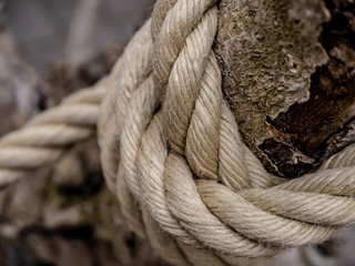 close up of layers of rope tied around an beautiful old wooden log