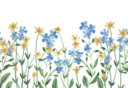 watercolor seamless border of blue forget-me-not and yellow wildflowers with green leaves on white background