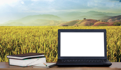 Laptop and books on desk with rice field and mountain background