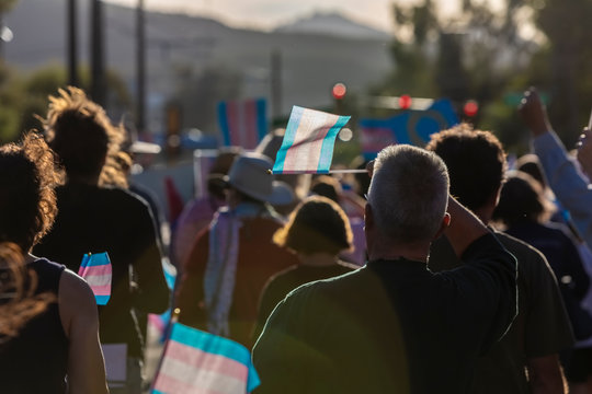 Marchers with Trans Support Flags at Rally