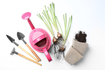Composition with gardening equipment on white background, top view