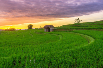 amazing sky with sunset at paddy fields north bengkulu natural beauty of bengkulu utara indonesia with mountain barisan and green nature