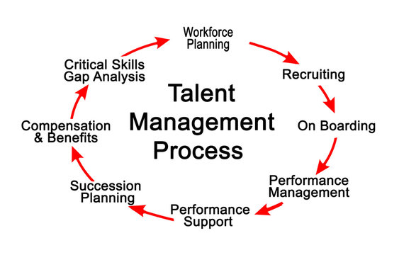 Talent Management Process
