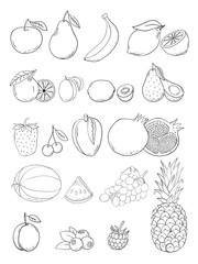 Vector sketch hand drawn fruits and berries icons set