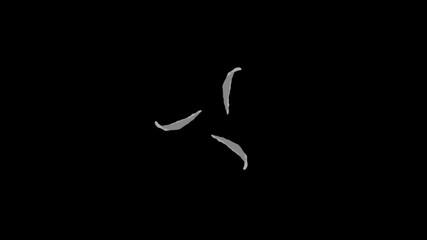 Flash Water Animation