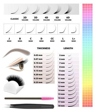 Eyelash extension, infographic table, vector illustration