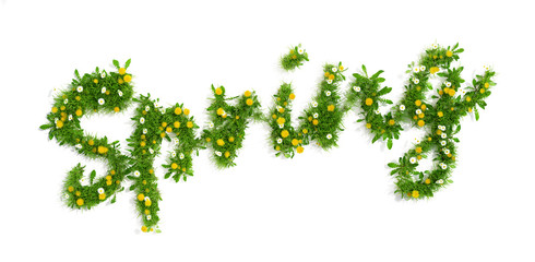 word spring made of grass, dandelion and daisy flowers, 3D render
