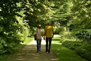Couple marchant en toute tranquillité au milieu de la nature luxuriante du jardin botanique du domaine provincial de Vrijbroekpark à Malines