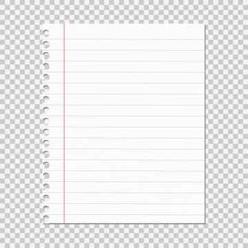 Paper sheet in a ruler on a white background, torn off.